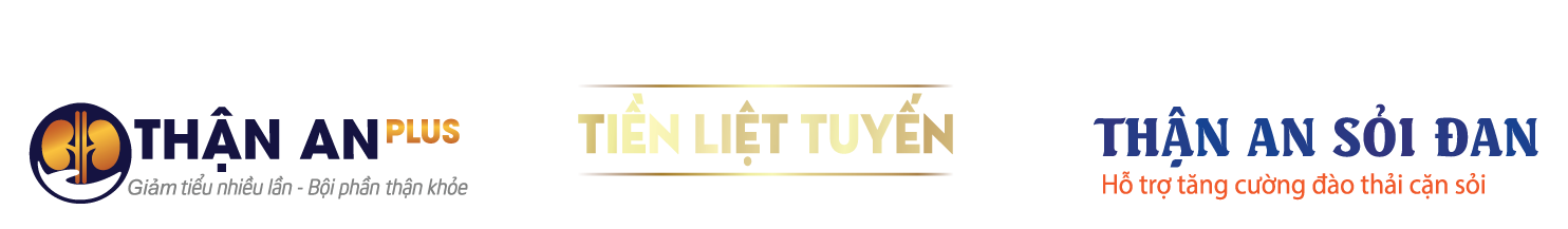 Thận An Plus